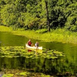 Canoeing in Pinery Provincial Park