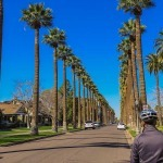 Cycling Phoenix