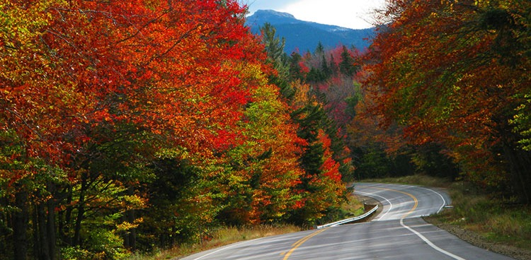 Fall for New Hampshire
