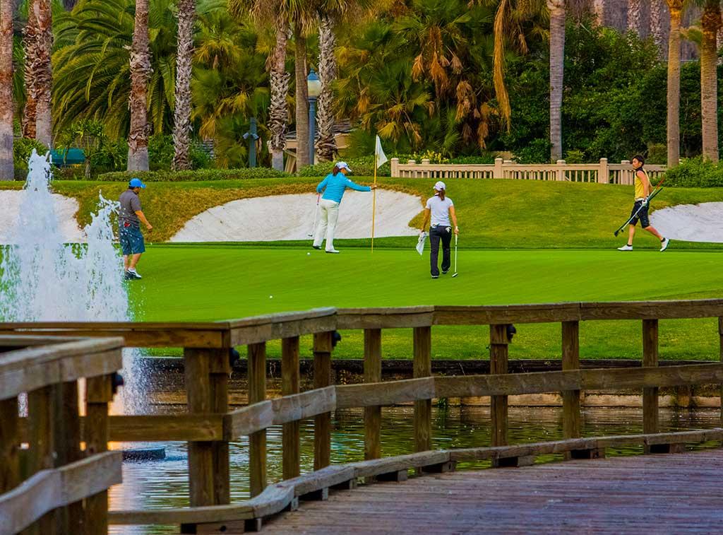 Top florida golf schools for Saddelbrook