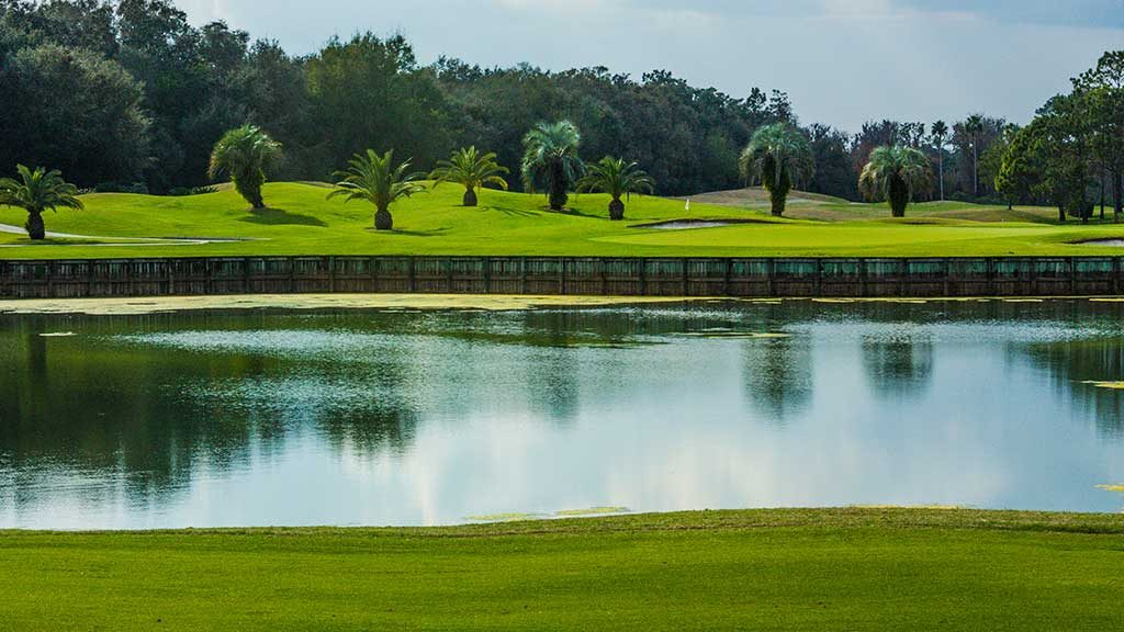 The Palmer Course at Saddlebrook Resort