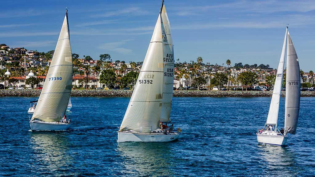 Sailboats San Diego Bay