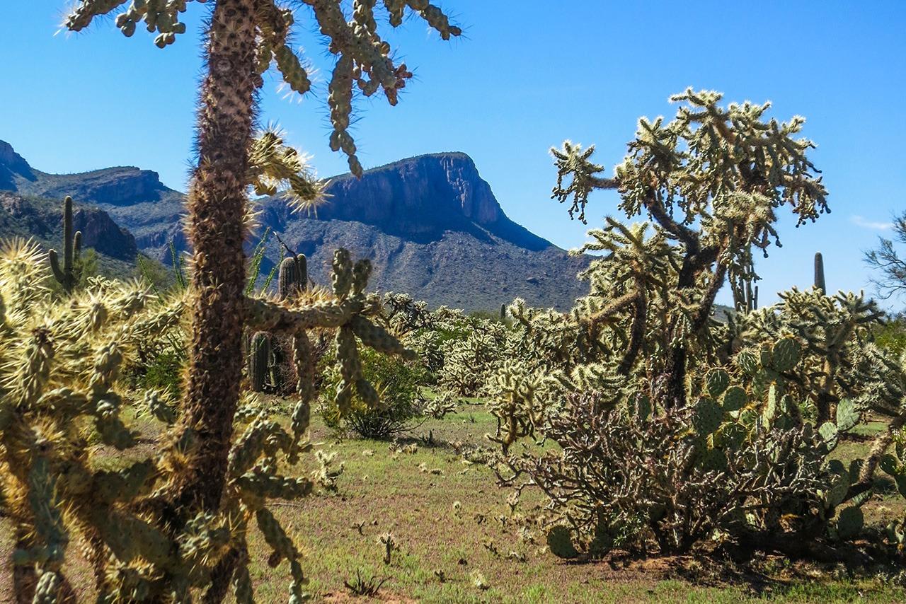 White Stallion Ranch, Tucson Arizona